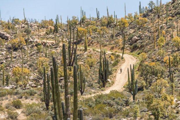 Bikepacking en el desierto